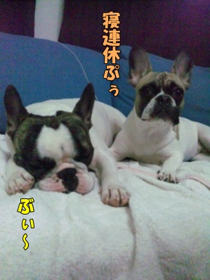 2_20120427133608.jpg