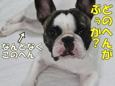 2_20120713155605.jpg