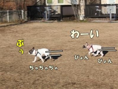3-1_20121207113350.jpg