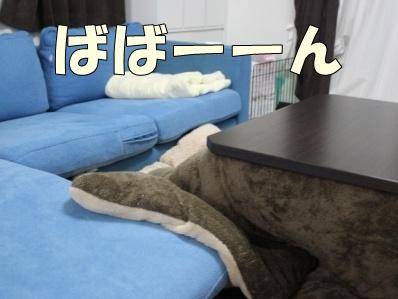 4-1_20121114112656.jpg