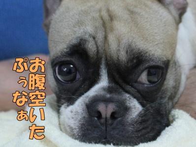 5-1_20120710133457.jpg