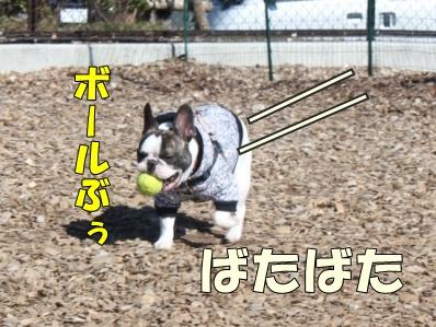 5-1_20121108110102.jpg