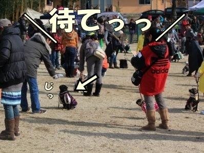 5-1_20121126165752.jpg