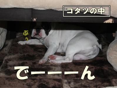 9-1_20121114110912.jpg