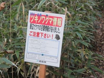9_20121108162917.jpg