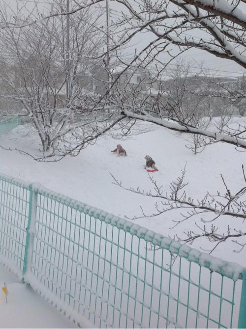 雪が降った4