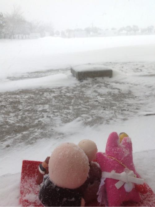雪が降った7
