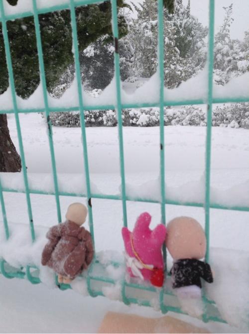 雪が降った9