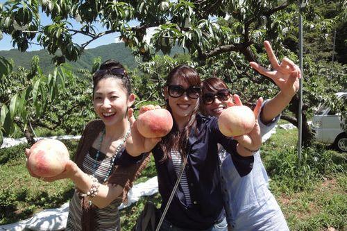 神奈川から近い山梨の桃狩り食べ放題時間無制限