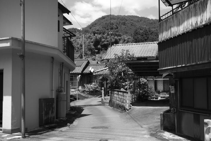120804ColorSkopar28F35Nishiki.jpg