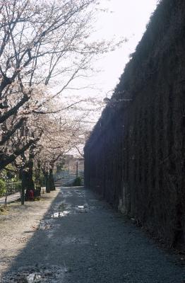 20120404_Kurashiki_Summarit50_Gold100_6.jpg