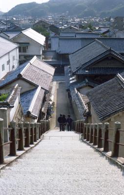 20120404_Takehara_Summarit50_Gold100_11.jpg