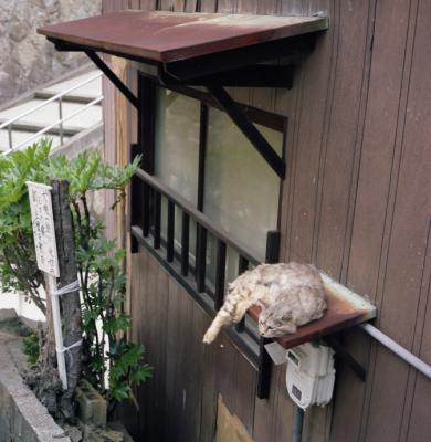 20120604_Onomichi_Rolleiflex28F_Portra160VC_18.jpg