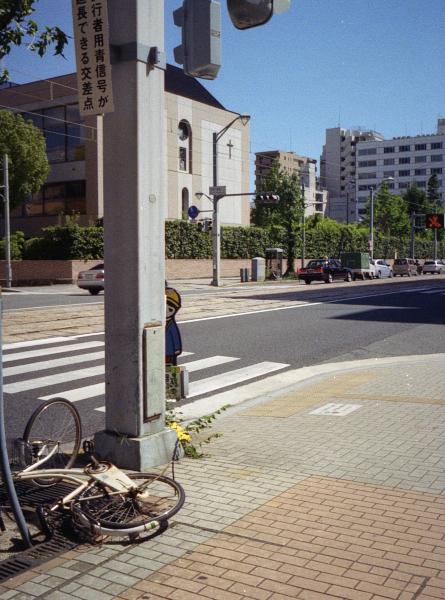 20120816_neighborhood_AutoHalfEF2_Gold100_10.jpg