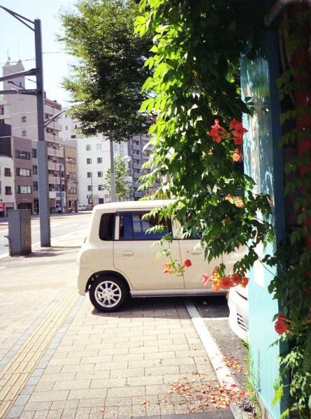 20120816_neighborhood_AutoHalfEF2_Gold100_13.jpg