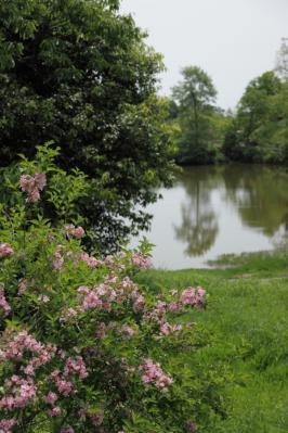 2012_05_13_BotanicalGarden00006.jpg