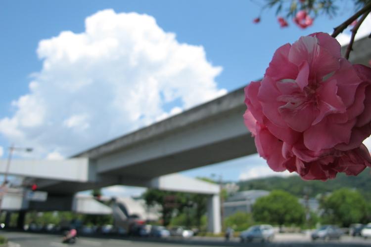 2012_08_07_SummerSky00002.jpg