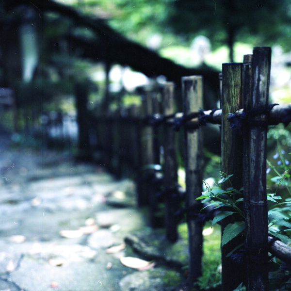 Mitaki_20120923_Rolleiflex28F.jpg