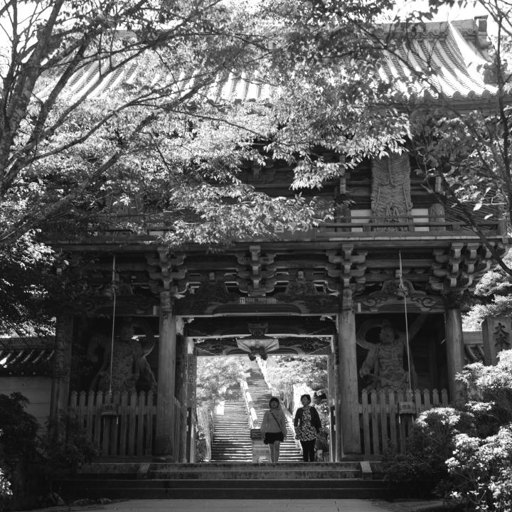 Miyajima_20121009_Rolleiflex28F_Acros__4.jpg