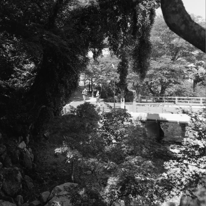 Miyajima_20121009_Rolleiflex28F_Acros__5.jpg