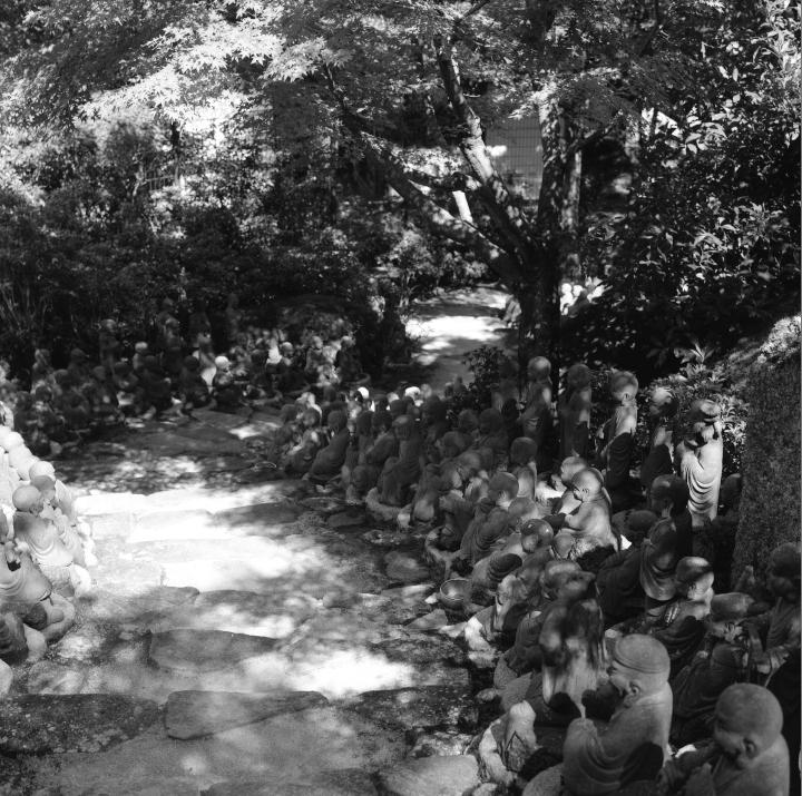 Miyajima_20121009_Rolleiflex28F_Acros__9.jpg