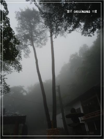 伊香保神社境内