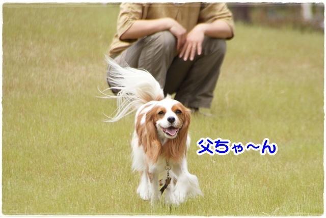20120513_277.jpg