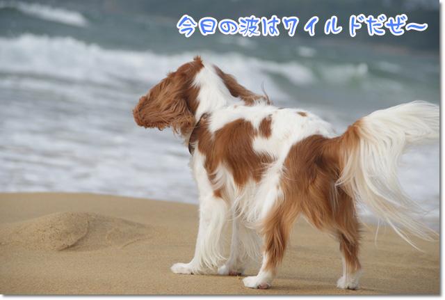 20120628_002.jpg