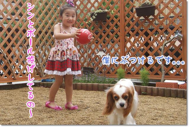 20120701_002.jpg