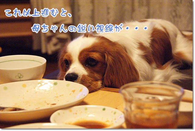 20120711_005.jpg