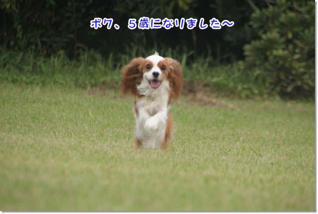 20120928_028.jpg