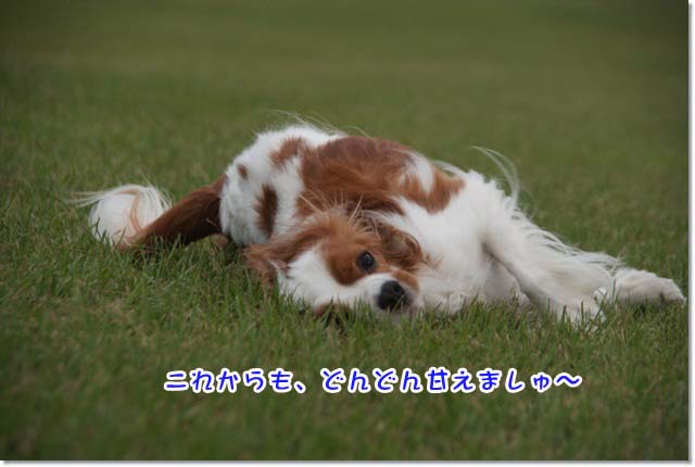 20120928_035.jpg