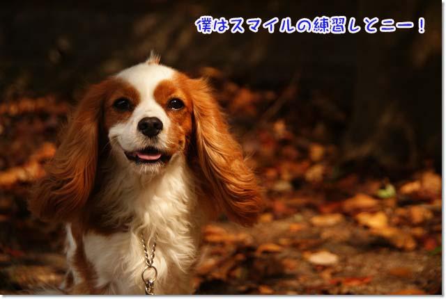 20121011_062.jpg