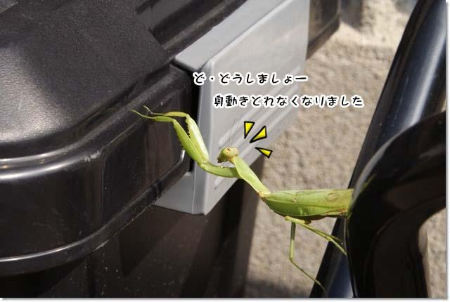 20121015_020.jpg