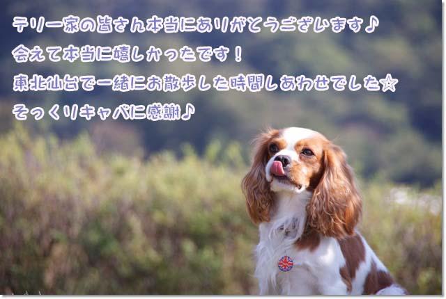 20121022_085.jpg