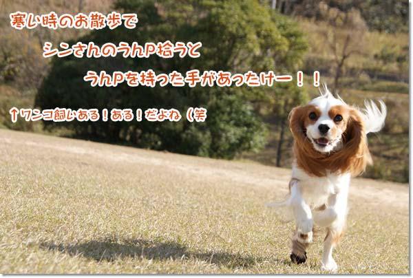 20121212_105.jpg