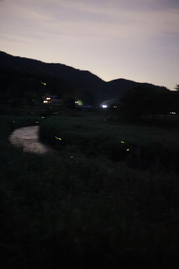 _MG_8576_convert_20120626032311.jpg