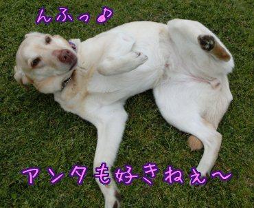 2013_0426_02.jpg