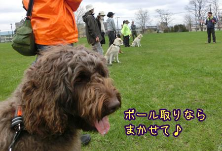 2013_0513_03.jpg