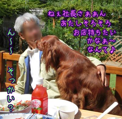 2013_0603_06.jpg