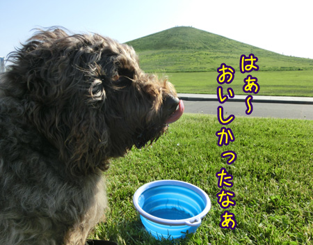2013_0609_04.jpg