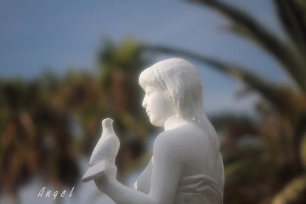 女神(201210132005)