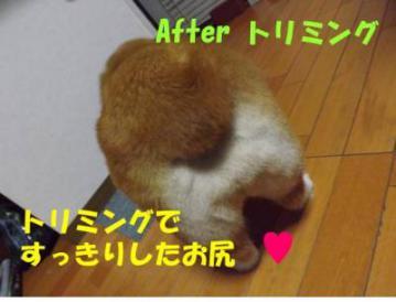 20120422-02.jpg