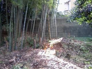 arima-higashiyamada19.jpg