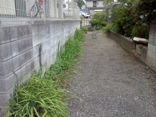 arima-higashiyamada8.jpg
