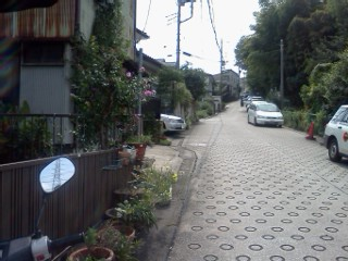 arima-hisasue15.jpg