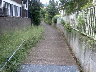 arima-nogawa12.jpg