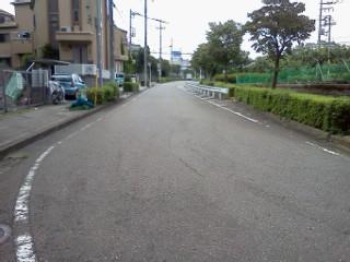 azaminominamishiryuu6.jpg