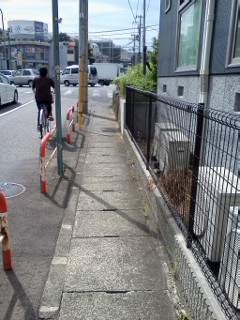 edashiryuu-ankyo1.jpg