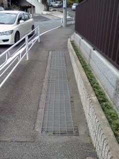 edashiryuu9.jpg